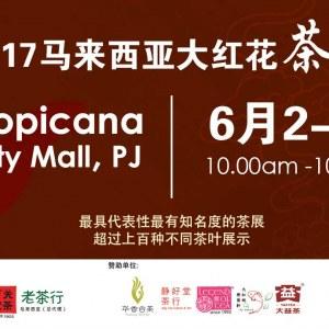 Da Hong Hua International Tea & Cultural Expo 2017