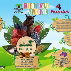 Citta Mall Chill out Weekend - Farm in the City