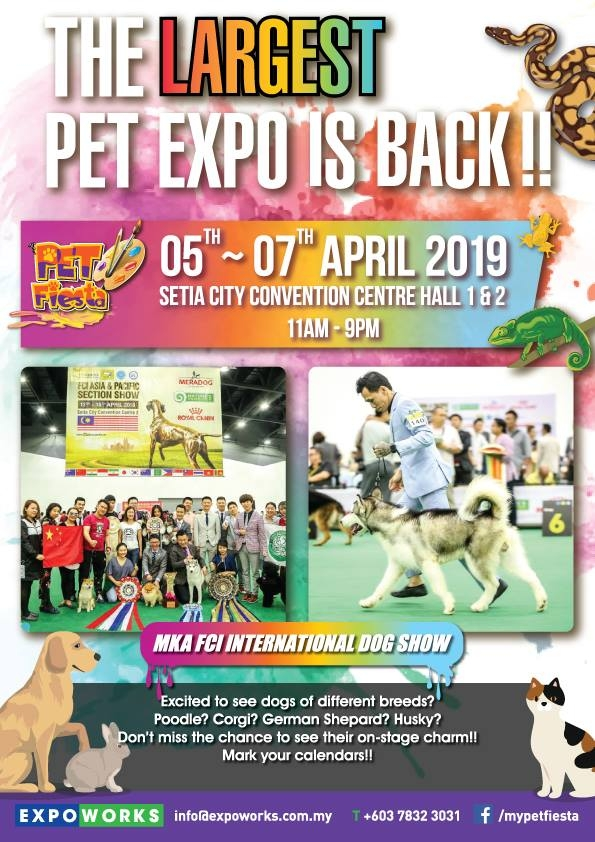 Fci International Dog Shows 2019